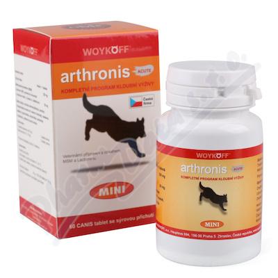 Arthronis mini ACUTE CANIS (sýrová přích.) tbl.60